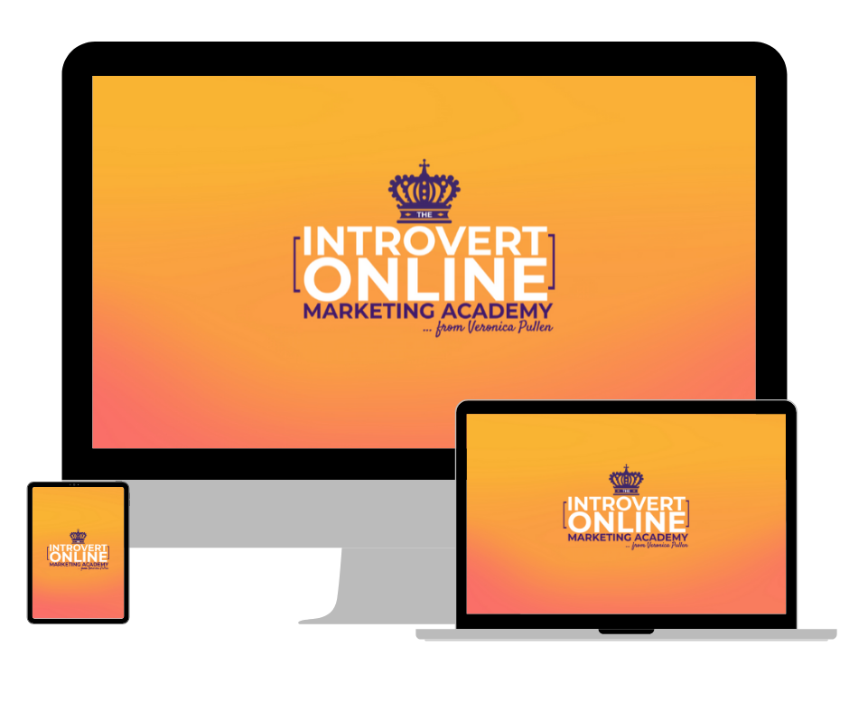 The Introvert Online Marketing Academy